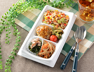 20品目のサラダBOX(豆腐ハンバーグ)