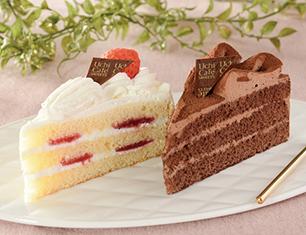 パーティーケーキ 苺&チョコ 2個