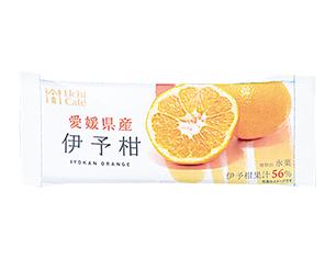 ウチカフェ 日本のフルーツ 伊予柑 80ml