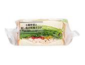 6種野菜と蒸し鶏の和風サラダのサンド